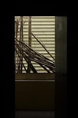 IMG_0171_1 (pavel.milkin) Tags: door city light art dark bamboo helios 442 helios442 helioslens