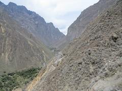 Colca Canyon-22