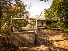 San Antonio Botanical Garden (hickamorehackamore) Tags: sanantonio canon december texas tx botanicalgarden 2014 sanantoniobotanicalgarden