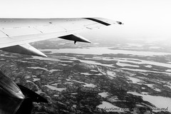 Wing north-9475 (Mathieu Dumond) Tags: november winter blackandwhite bw canada tree fall plane aircraft jet nwt aerial arctic northwestterritories spruce taiga