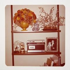image492 (ierdnall) Tags: love rock hippies vintage 60s retro 70s 1970 woodstock miniskirt rockstars 1960 bellbottoms 70sfashion vintagefashion retrofashion 60sfashion retroclothes