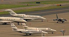 One Of These Things Is Not Like The Others... (planephotoman) Tags: canada 1982 airport international pdx 147 cessna citation netjets 550 560 dornier 750 alphajet dassaultbreguet kpdx topaces citationx pdxmilitary militarycontractor n996qs jetbusiness northwesternenergy jetpdx cguta n323ne aircraftportland cn147 northwesterncorp n521tm idahopowercorp challenger300n1870gn870g leasingbiz