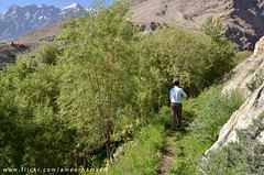 Shigar town, Baltistan (Ameer Hamza) Tags: pakistan mountain man mountains single gb guide sher guru balti waliking ppa baltistan northenpakistan ameerhamzaadhia gilgitbaltistan ameerhamzaphotography