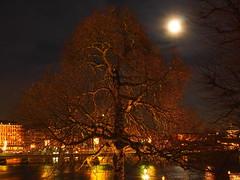No leaves left (Jens Haggren) Tags: longexposure trees sky moon water reflections lights stockholm olympus omd em10 olympusmzuikodigital25mmf18