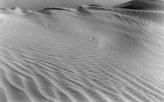 Mesquite Dunes (Amanda Tomlin) Tags: 4x5 deathvalley acros ddx canham