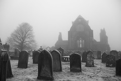 Sweetheart Abbey in the cold (Lucky Poet) Tags: winter mist cemetery graveyard fog architecture scotland blackwhite frost ruin gravestones dumfriesandgalloway newabbey sweetheartabbey