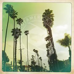CALIFORNIA-655