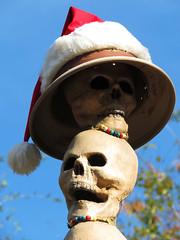 Festive Skulls (meeko_) Tags: world santa christmas cruise hat skull florida magic kingdom disney jungle waltdisneyworld walt santahat jingle themepark magickingdom attraction junglecruise adventureland disneychristmas jinglecruise