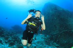 m/v Simlan Explorer (similandivingsafaris) Tags: ocean people fish water divers aqua scuba diving scubadiving seaturtle andamansea scubadivers kohbon kohtachai similansurinislands worldfamousrichelieurock