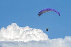 Fly High! | Paragliding (AnNamir c[_]) Tags: clouds fly malaysia paragliding extremesports glider takeoff nwn paramotor kualakubu thumbling huluselangor bigyear annamir tamanmillenium paraglidingsite paraglidingkualakubu