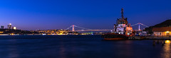 IMGP2666-2 (UmitCukurel) Tags: nightphotography sea night cat turkey puente mar pentax turkiye istanbul gato turquia bogazici bosphorus kedi kizkulesi maidentower k3ii