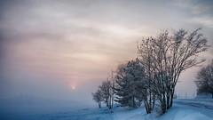 Koigen Dusk (O) Tags: norway fog norge dusk hamar solnedgang tke hedmark koigen