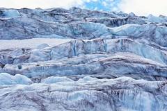 Walk on Athabasca Glacier (thoschi) Tags: canada ice alberta kanada icefield athabascaglacier