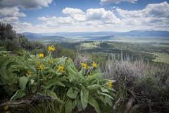 Grand Teton National Park (Phillip Waller) Tags: park mountains landscape view superior national vista grandteton