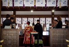 Wedding at Matuso Taisha (Christian Kaden) Tags: wedding japan kyoto shrine kultur culture marriage clothes   kimono kioto shinto kansai hochzeit  taisha   kleidung schrein   shintoism       matsuoshrine     matsuoschrein