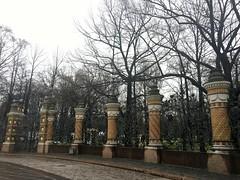 IMG_6663 (Maryika) Tags: city view stpete citywalk peterburg cityview