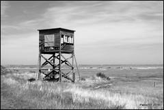 Look out! (Pablo101) Tags: sea blackandwhite beach essex beachhuts essexbeach