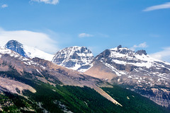 View from the Icefields (judymtomlinson) Tags: travel trees vacation sky snow mountains clouds nikon glacier hills alberta jaspernationalpark icefield