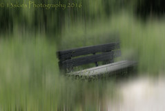 Blurring the lines (13skies) Tags: park motion blur green bench relax sitting chaos creative confusion