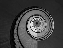 Bremen stairs (michael_hamburg69) Tags: stairs germany deutschland grey star stair steps grau stairwell stairway escalera scala bremen stern escalier rampa treppenhaus escala blockd avib  photowalkmitankeknipst doventorscontrescarpe172 deckenmotiv