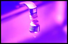 Pink (Josh Rokman) Tags: pink kitchen faucet sink nikond7000