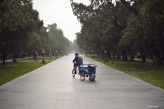 Parc (Stefan Bodar) Tags: voyage china travel art temple photo nikon raw beijing du stefan ciel asie  parc vlo  artistique pkin parspective bodar