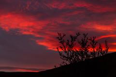 Sólsetur í Fljótshlíð/Sunset at Fljótshlíð (icecold46) Tags: sunset iceland redcloud suðurland fljótshlíð sólsetur
