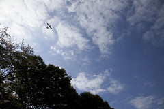 A SMALL AIRPORT, SOME PARKS AND CLOUDS - XXXVIII (Jussi Salmiakkinen (JUNJI SUDA)) Tags: park wood autumn sky cloud japan landscape tokyo cityscape     chofu    nogawa
