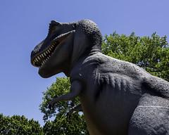T-Rex_SAF4638 (sara97) Tags: outdoors dinosaur missouri saintlouis trex forestpark tyrannosaurus citypark urbanpark photobysaraannefinke copyright2016saraannefinke