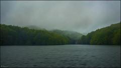 En la niebla (antoniocamero21) Tags: barcelona santa color verde atardecer casa foto sony paisaje pantano nubes catalunya fe niebla hayas montseny