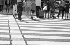 160618_NikomatFt2_002 (Matsui Hiroyuki) Tags: fujifilmneopan100acros nikonnikomatft2 nikonnikkorhauto85mmf18