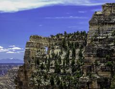 BIG.0089.16052014.P5166841 (PhotoCineast) Tags: arizona usa digital ed grandcanyon olympus omd 128 em1 mzuiko 12‑40mm