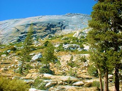 Yosemite National Park (rsiler53) Tags: yosemitenationalpark