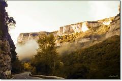 NIEBLA EN EL CAMINO (Angelines3) Tags: burgos niebla castillalen desfiladero