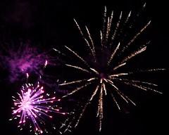 Fireworks 2014 (Rebecca Jay Thorne) Tags: red lines golden purple fireworks explosion magenta streaks bang starburst 2014