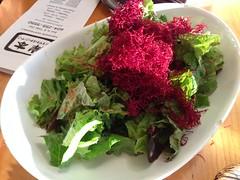Beet root salad (A. Wee) Tags: canada vancouver salad beet kishimoto 溫哥華 加拿大