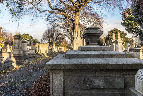 Mount Jerome Cemetery & Crematorium is situated in Harold's Cross Ref-100454