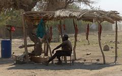 DSC_5993 (stephanelhote) Tags: portraits enfants paysages etosha okavango flore fleuve afrique faune namibie zambie himbas zambèze