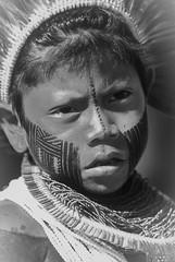 Kayapo (guiraud_serge) Tags: brazil portrait brasil amazon indian tribe ethnic indien matogrosso indio labret brsil tribu amazonie amazone forttropicale ethnie kayapo kuikuro metuktire plateaulabial hautxingu parcduxingu sergeguiraud artducorps ornementcorporel