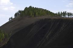 Caldera (ramosblancor) Tags: espaa naturaleza nature pine islands spain cone canarias caldera gran canary geology pino volcanic islas canaria canario volcn pinus crter geologa canariensis