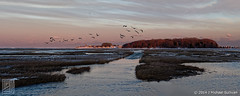 "The Road to Trouants Island at High Tide (18""x45"") (JMichaelSullivan) Tags: sunset panorama 100v pentax massachusetts 10f 600v dxo 200v 500v k3 marshfield 50mmf18 700v 300v 5f 15f 1000v 400v 900v 800v autopanopro trouantsisland opticspro"