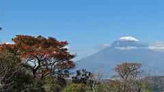 IMG_1085 (michele.flammia) Tags: giappone fujiyama