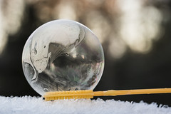 winter snow cold ice freeze bubble soapbubble