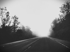 fading...... (iamlewolf) Tags: trees blackandwhite white black tree beautiful beauty mystery grey drive flickr pretty driving edited gray creepy spooky photograph mysterious nothing grayscale edit greyscale