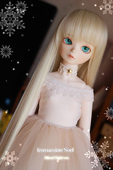 Silent Night (ImmaculateNoel) Tags: outfit handmade may bjd sarang bluefairy