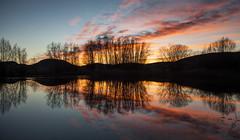 Storia d'inverno. (da.geli) Tags: tramonto