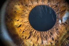 Pozos del Alma (emiliokuffer) Tags: iris macro eye closeup ojo pupil pupila strobist