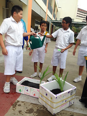 2014 Sec 1 Values-In-Action (BendemeerSecondary) Tags: science via geography biology sec1 naturewalk cce integrated humanities valuesinaction