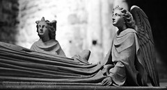 The Effigy (Emma Jane.Photography) Tags: blackandwhite white black heritage church dark wings memorial cathedral gothic victorian chester monastery angels bishop effigy 1686 johnpearson