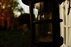 Lamp (Dave Harwood) Tags: light lamp rural countryside rustic cottage